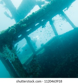 Underwater Wreck with Scuba Diver