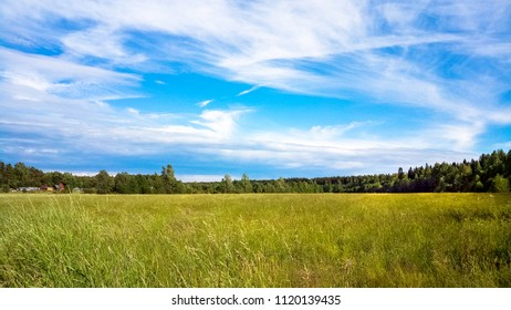 An undeveloped field and a Sunny sky with clouds. Rural landscape