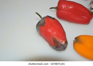 Unedited image of a lot of rotten sweet peppers with mold on a white cutting board