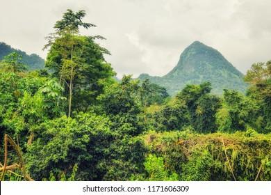 UNESCO Biosphere Reserve, Principe, Sao Tome and Principe, Atlantic Ocean, Africa