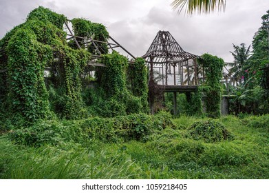 Unfinished construction of balinese villa overgrown with lush foliage, Bali, Indonesia