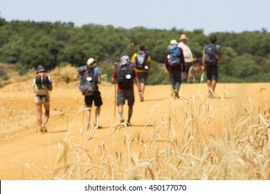 unfocused pilgrims near Astorga , Way of St James,  Camino de  Santiago, to Compostela, Leon, Spain