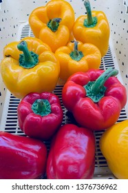 unhealthy skin on puckered bell peppers, withered pepper, red , yellow