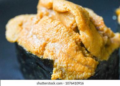 Uni sushi close up macro ( Japanese sea urchin sushi )