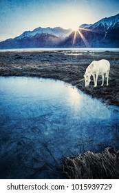 Unicorn by a frozen pond in winter with the sun coming up from behind a mountain with textures.