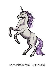 Unicorn hand drawn image. Original colorful artwork, comic childish style drawing.