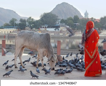 An unidentified Indian woman pilgrim standing on the Ghat in Pushkar, India. Pushkar is a sacred place of the Hindus in Rajasthan state