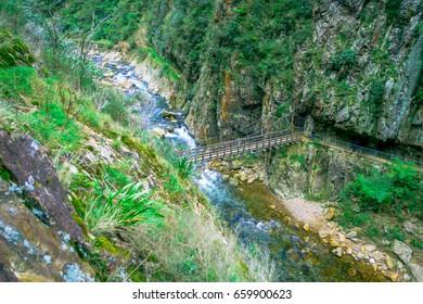 An unidentified people crossing a brindge and walking in natural walkway Karangahake Gorge, river flowing through Karangahake gorge surrounded by native rainforest, New Zealand