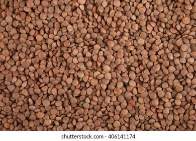 A uniform background of lentil seed