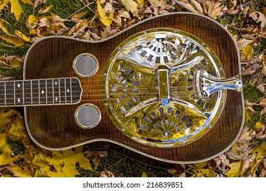 Unique guitar lays on the ground with fall leaves