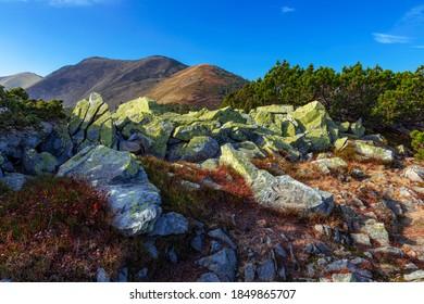 Unique landscape of the Carpathians, Gorgany region, Ukraine. Landscape of the highlands of the Carpathians rocky placers.