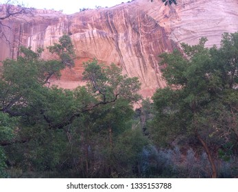 Unique navajo sandstone with desert varnish coloring and formation along the trail towards the Lower Calf Creek Falls in the Grand Staircase Escalante National Monument in Utah