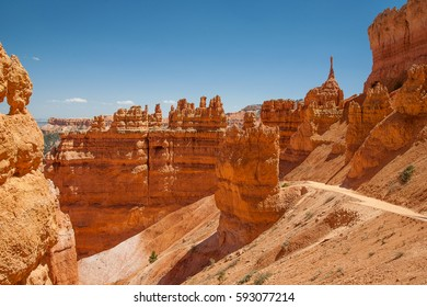 Unique rock formations, called Hoodoos, in Bryce Canyon National Park, Utah, USA, United States of America.