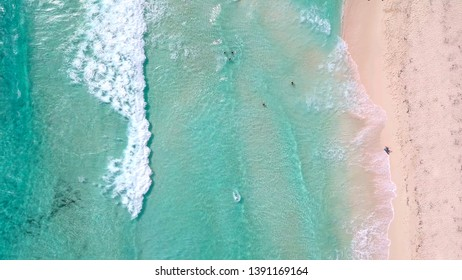 Unique straight down aerial view of people swimming at a tropical beach in Cozumel, Mexico.