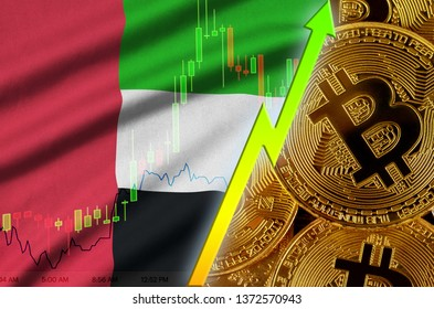 United Arab Emirates flag and cryptocurrency growing trend with many golden bitcoins