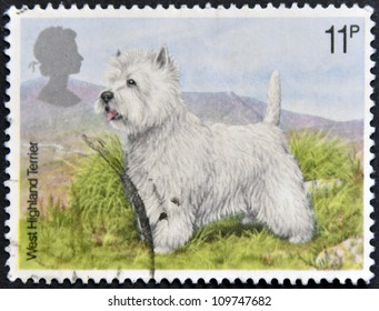 UNITED KINGDOM - CIRCA 1979: A Stamp printed in Great Britain showing a West Highland Terrier, circa 1979