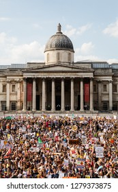 UNITED KINGDOM, LONDON, TRAFALGAR SQUARE, 07/13/2018, a wide angle portrait shot of the crowd that attended the anti-brexit march.