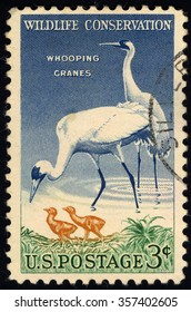 UNITED STATES OF AMERICA - CIRCA 1957: A stamp printed in USA dedicated to Wildlife Conservation Issue shows a Whooping Cranes (Grus Americana), circa 1957