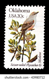 UNITED STATES OF AMERICA - CIRCA 1982: A stamp printed in the USA shows image of a Scissor-tailed flycatcher, circa 1982