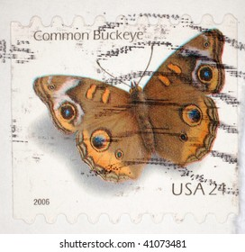 UNITED STATES OF AMERICA - CIRCA 2006: A stamp printed in the United States of America shows image of the Common Buckeye butterfly, series, circa 2006