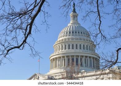 United States Capitol Building in Washington DC - USA