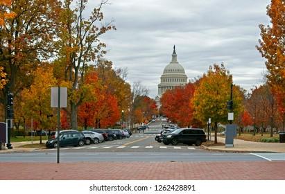 United States Capitol and Upper Senate Park. Washington, DC