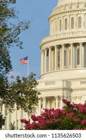 United States Capitol - Washington D.C. United States of America