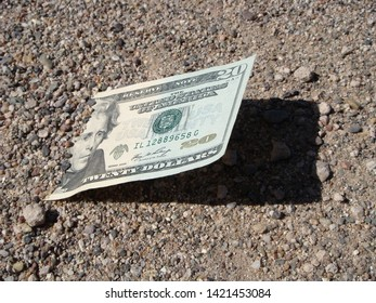 United States Twenty Dollar Bill Sticking Out From The Ground In The Morning Sunlight