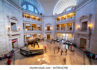 United States, Washington - September 21, 2019: The National Museum of Natural History is a natural history museum administered by the Smithsonian Institution, located on the National Mall.