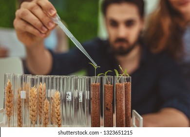 University biologist is analyzing the sample of plant in the lab tube, watering it with drops of nutritious fluid.