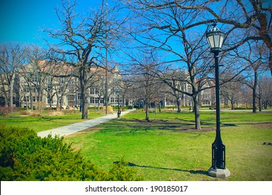 University campus. Chicago University at spring day.