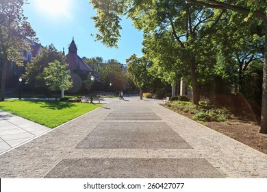 University campus on a sunny day in early Fall.