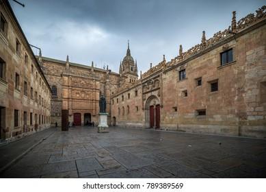 University of Salamanca, front of the Major Schools.