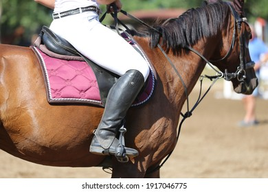 Unknown competitor riding on show jumper horse on equitation event summer time. Show jumper horse under saddle