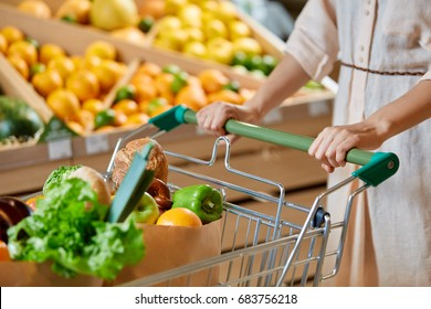 An unknown girl in a dress is shopping in a supermarket. Women's hands roll food stroller with vegetables and healthy food