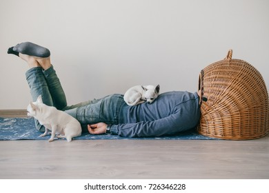 Unknown male lying on yoga mat. Head in wicker doghouse. Man in fashionable clothing. Weird odd bizarre strange unusual headless guy. Little mexican chihuahua puppies sleeping at home. Homeless dogs
