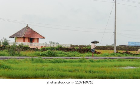 An unknown person walking with an umbrella opened in slight rain near Parakkulam in Madayipara, Kannur District, Kerala - June 24 2018