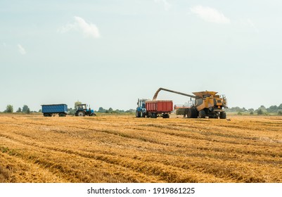 Unloading grains into truck by unloading auger. Combine harvesters cuts and threshes ripe wheat grain. Wheat harvesting on field in summer season. Process of gathering crop by agricultural machinery