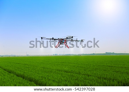 Unmanned Aerial Vehicle Spray Pesticide Stock Photo (Edit Now