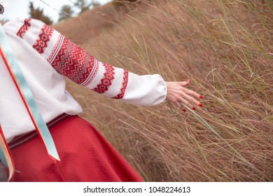 Unmarried (can be distinguished by ribbons) Ukrainian girl dressed in traditional attire stroking grass while promenading in the field