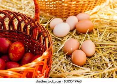 unpainted fresh chicken eggs lie on the straw next to the basket near the brown painted eggs