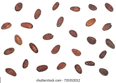unpeeled cocoa bean isolated on white background with copy space for your text. Top view. Flat lay pattern