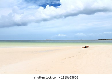 Unrecognizable adults sunbathing on the beach sand, minimalist scene, shallow focus.