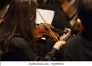 unrecognizable female brunette violinist playing in a professional orchestra. Shallow depth of field.