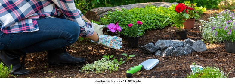 Unrecognizable female gardener holding beautiful flower ready to be planted in a garden. Gardening concept. Garden Landscaping small business banner.