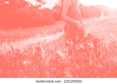 Unrecognizable girl in long dress in field at sunset. Color of the year 2019 Living Coral. Popular trend palette for design illustrations, fabrics, fashion, images. Tinted background