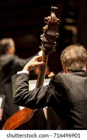 Unrecognizable male musician playing an upright or double bass with a classical orchestra. The conductor can be seen blurred in the background.