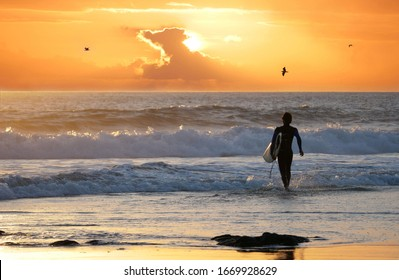 Unrecognizable male surfer walks towards the ocean to ride waves at sunset. Seagulls fly across the evening sky as man on surfing trip in Australia carries his surfboard and walks towards the ocean.