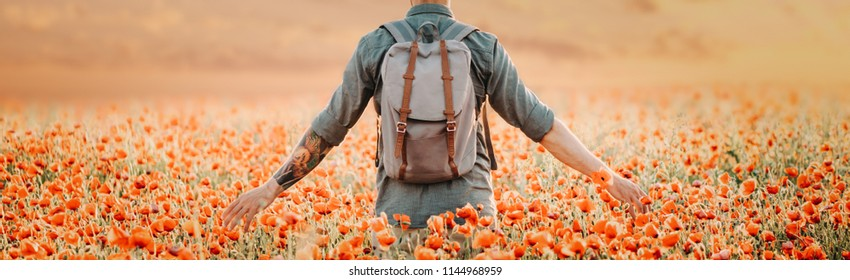 Unrecognizable man with backpack walking in poppies meadow.