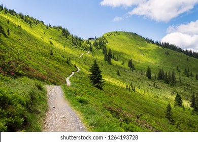 Unrecognizable people walk on beautiful mountain path on Wildenkarkogel Mountain in Alps, Saalbach-Hinterglemm, Zell am See district, , Austria, sunny summer day, blue sky, exploration wanderlust